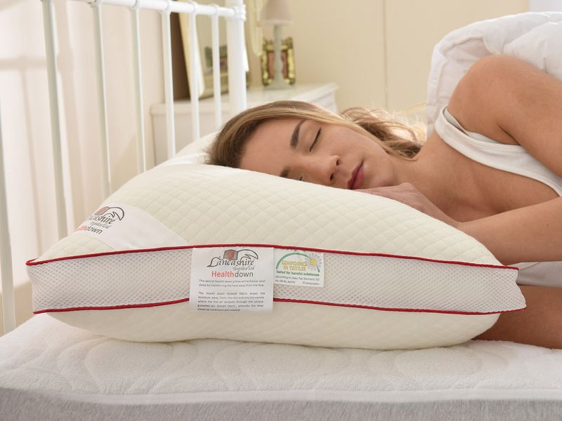 Breathable Health Down Pillows with Pillowcase