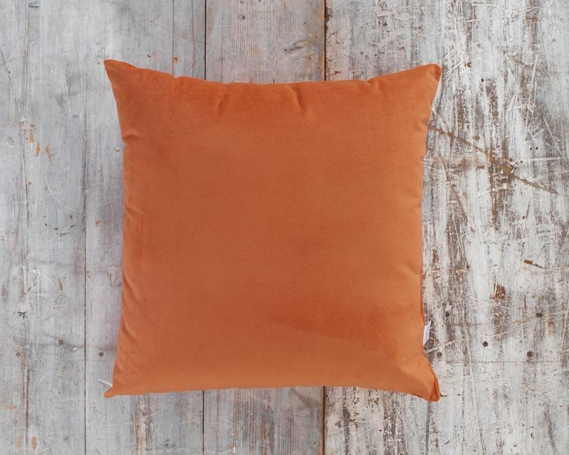 Outdoor Water Resistant Cushion | 65cm x 65cm - Peach